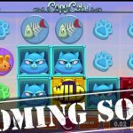Crazy city cats on the way to the reels thanks to new Copy Cats™ slot