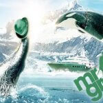 Jump aboard and win an all-inclusive Whale Safari at Mr Green Casino