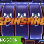 Upcoming Spinsane™ slot promises the ultimate slot machine experience